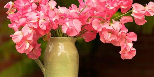 ставить цветы в вазу во сне