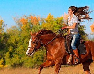 Ехать на лошади