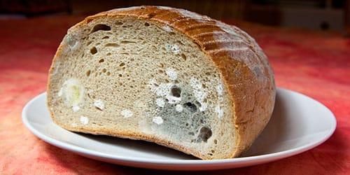 к чему снится хлеб с плесенью