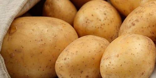 продавать картошку