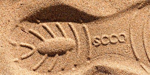 сонник следы от обуви