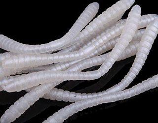 Белые черви