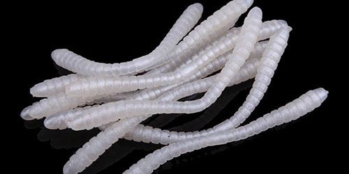 видеть во сне белых червей