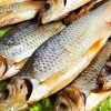 сушеная рыба во сне