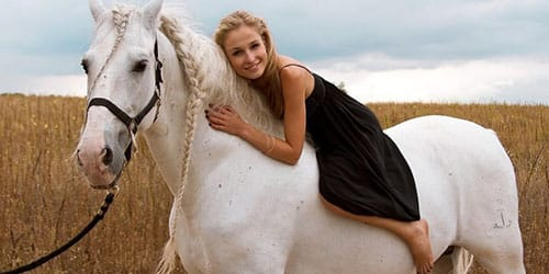 гладить лошадь во сне