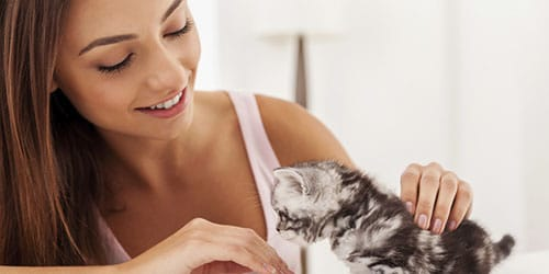 гладить котенка
