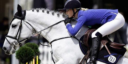 кони лошади во сне