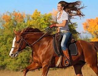 К чему снятся кони и лошади?