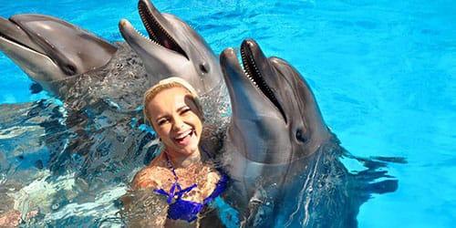 плавать с дельфинами во сне