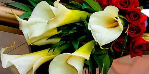 подарили белые цветы