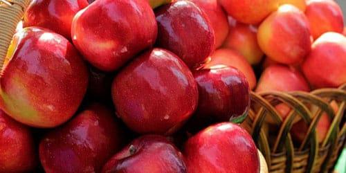 к чему снятся яблоки сорванные с дерева
