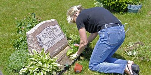 сажать цветы в землю