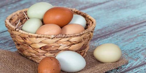 Сонник вареные яйца к чему снится вареные яйца во сне?
