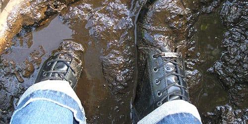 грязь под ногами во сне
