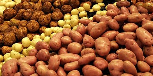 готовить пюре из картошки
