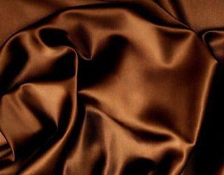 Сонник коричневый цвет