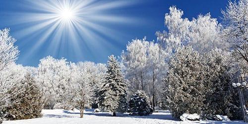 зимний солнечный день