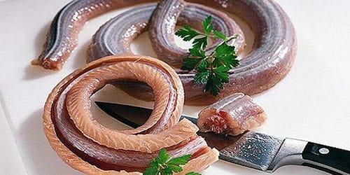 приснилось есть ядовитую змею