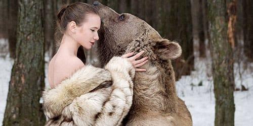 проявлять нежность к медведю