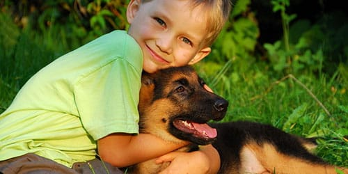 ребенку подарили собаку