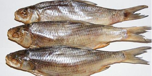 к чему снится сухая рыба