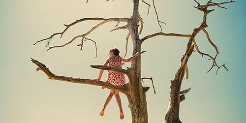 к чему снится залезть на дерево