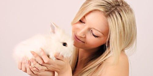 белый крольчонок в руках