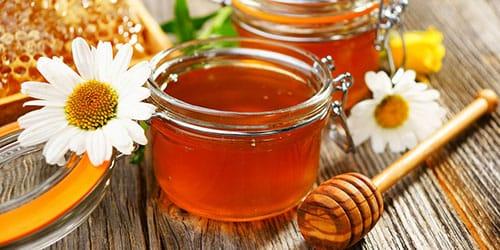 пробовать мед