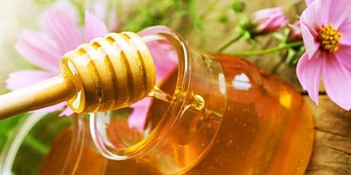 приснилось кушать мед