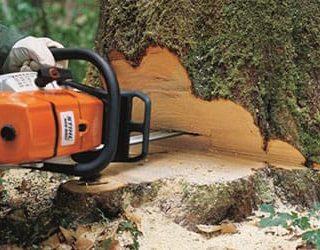Пилить дерево