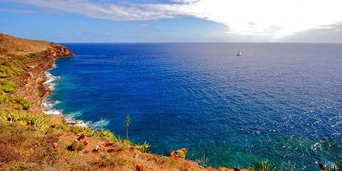 видеть во сне синее море