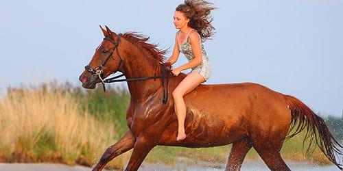 скакать на коне во сне