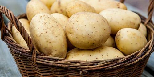 к чему снится собирать урожай картошки