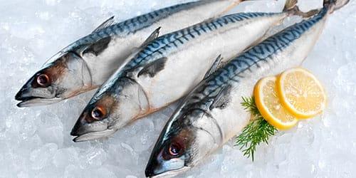 к чему снится свежая рыба женщине