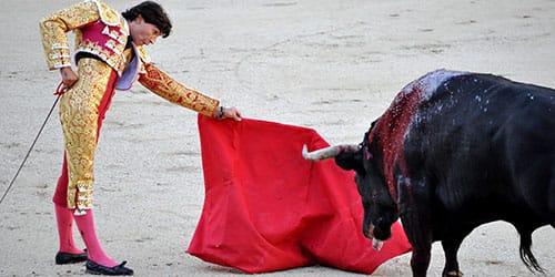 тореадор и бык