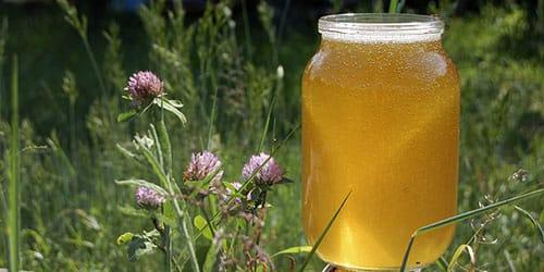 мед в лесу