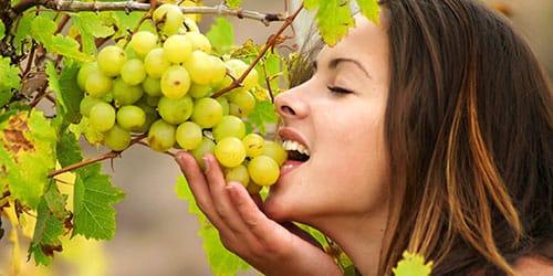девушка в винограднике