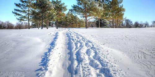 идти по снегу во сне
