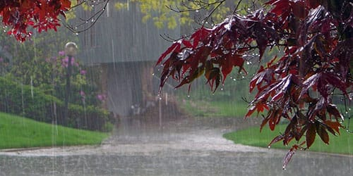 к чему снится сильный дождь ливень