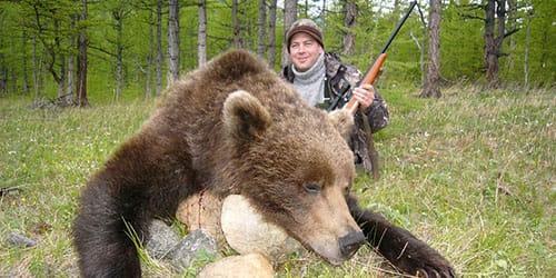 к чему снится убить крупного медведя