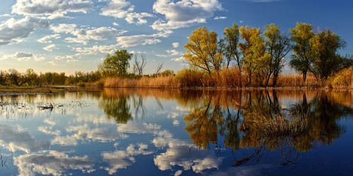спокойная река