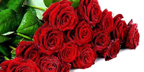 видеть во сне цветы розы