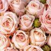 к чему снятся цветы розы