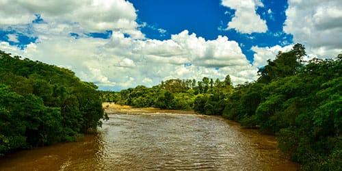 видеть грязную реку во сне