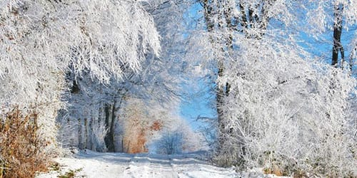 видеть много снега во сне