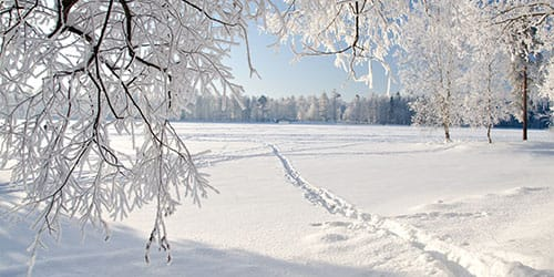белый чистый снег