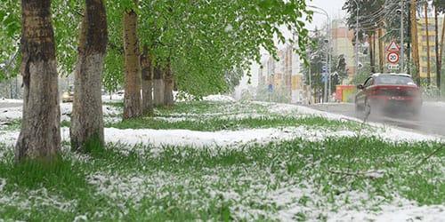 снег пошел летом