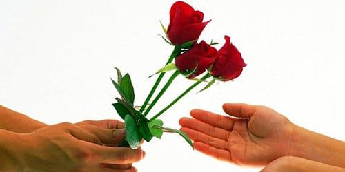 три цветка