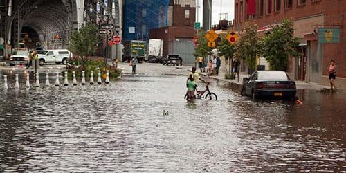 затопило город