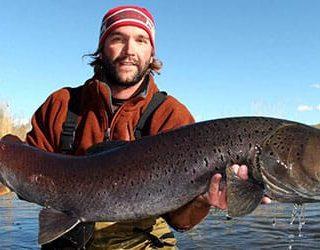 Поймать большую рыбу